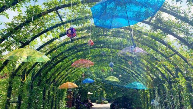 傘のトンネル2